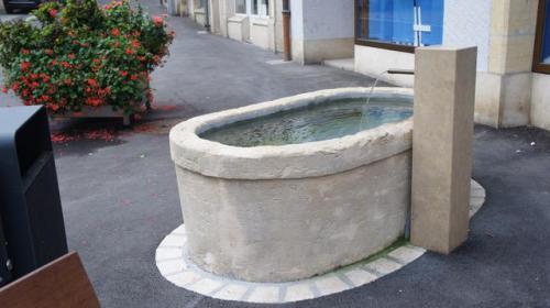 Fontaine - bassin restauré avec chèvre moderne neuve