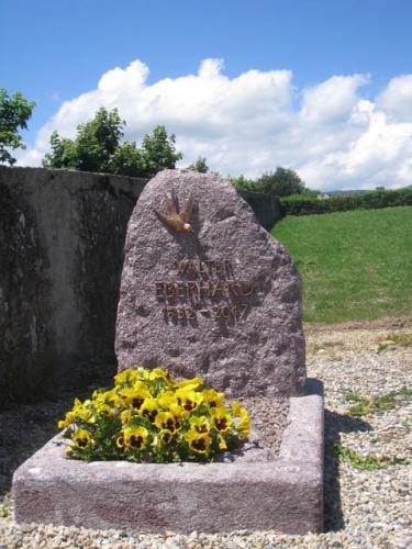 Monument en granit rouge, motif et lettres en bronze